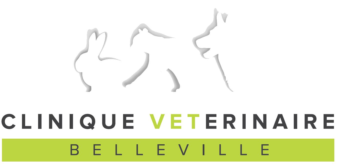 Clinique Belleville